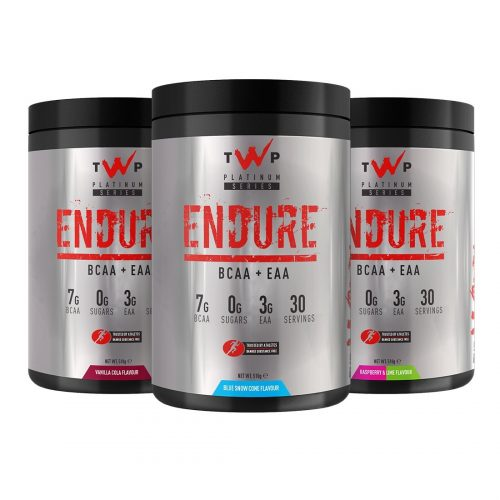 the warrior project endure
